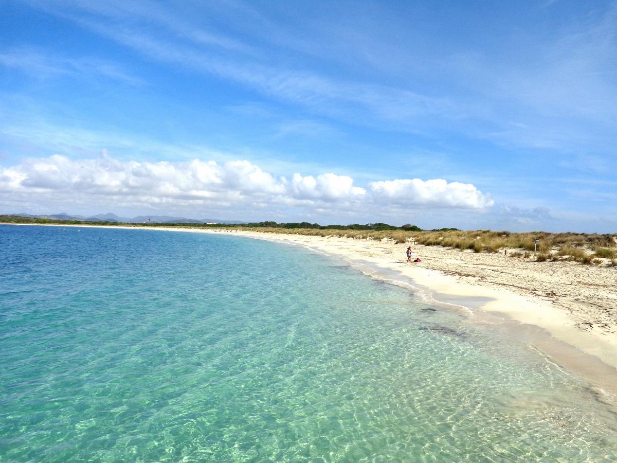 Espalmador Ibiza Day Trip