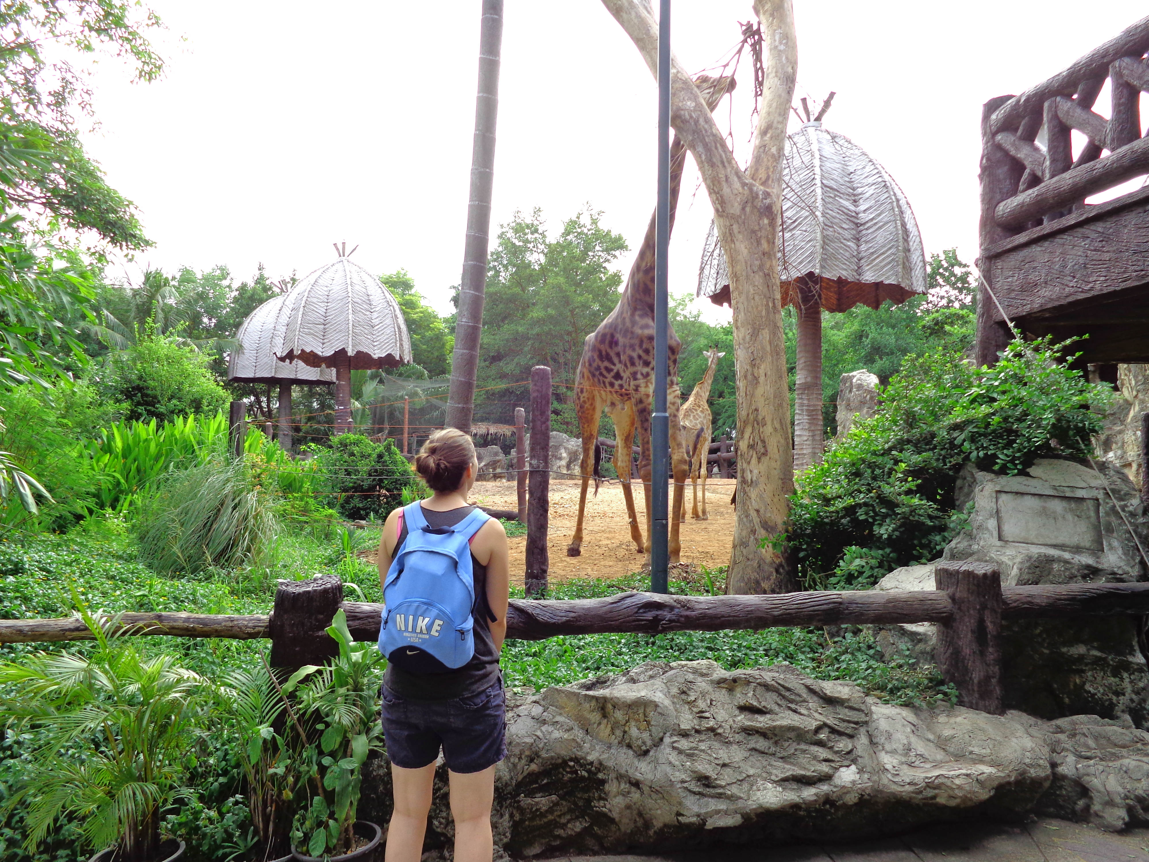Why You Should Put Bangkok Zoo on Your Itinerary: The Strange Things We Witnessed