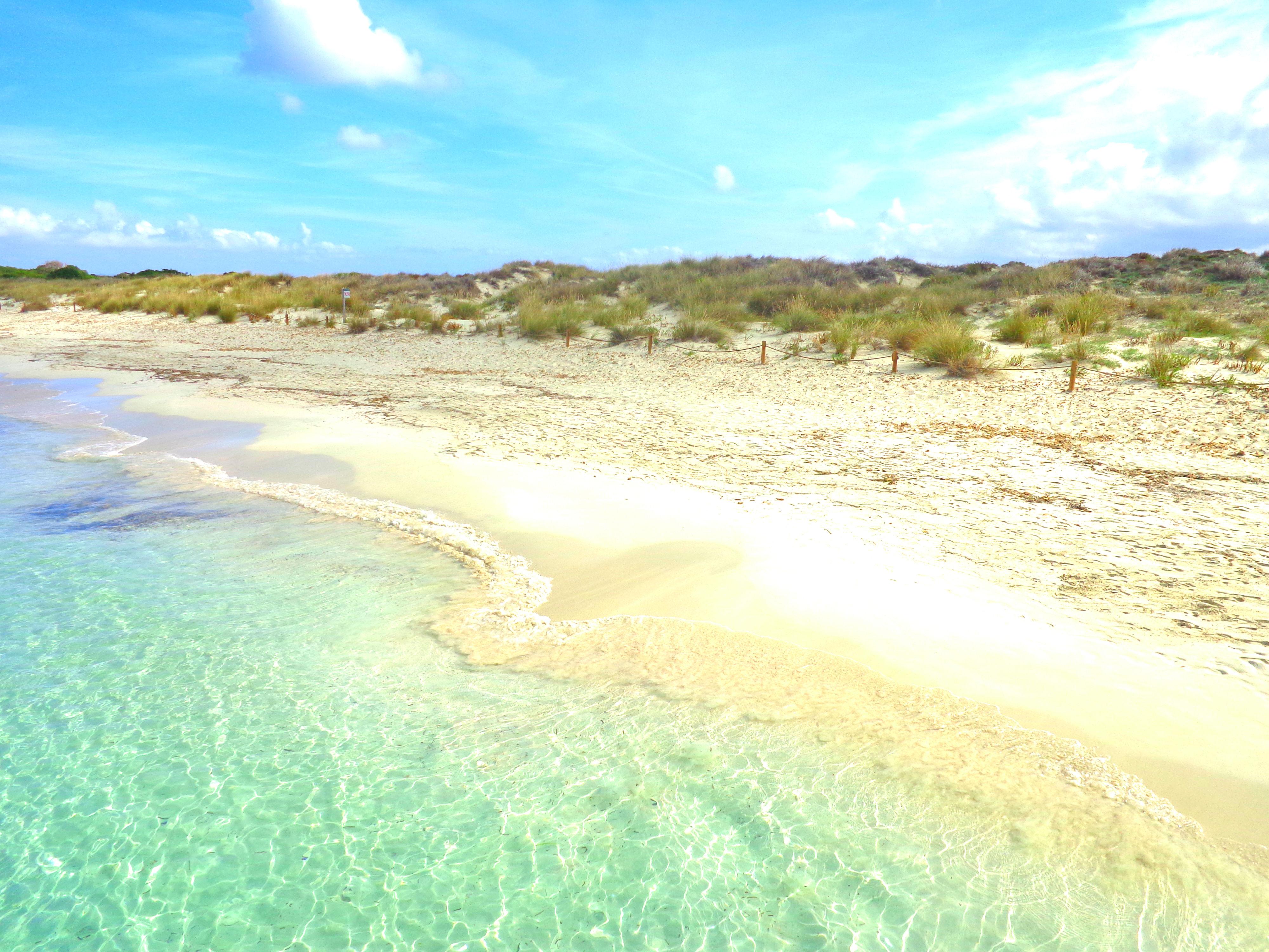 An Ibiza Day Trip to the Island of Espalmador