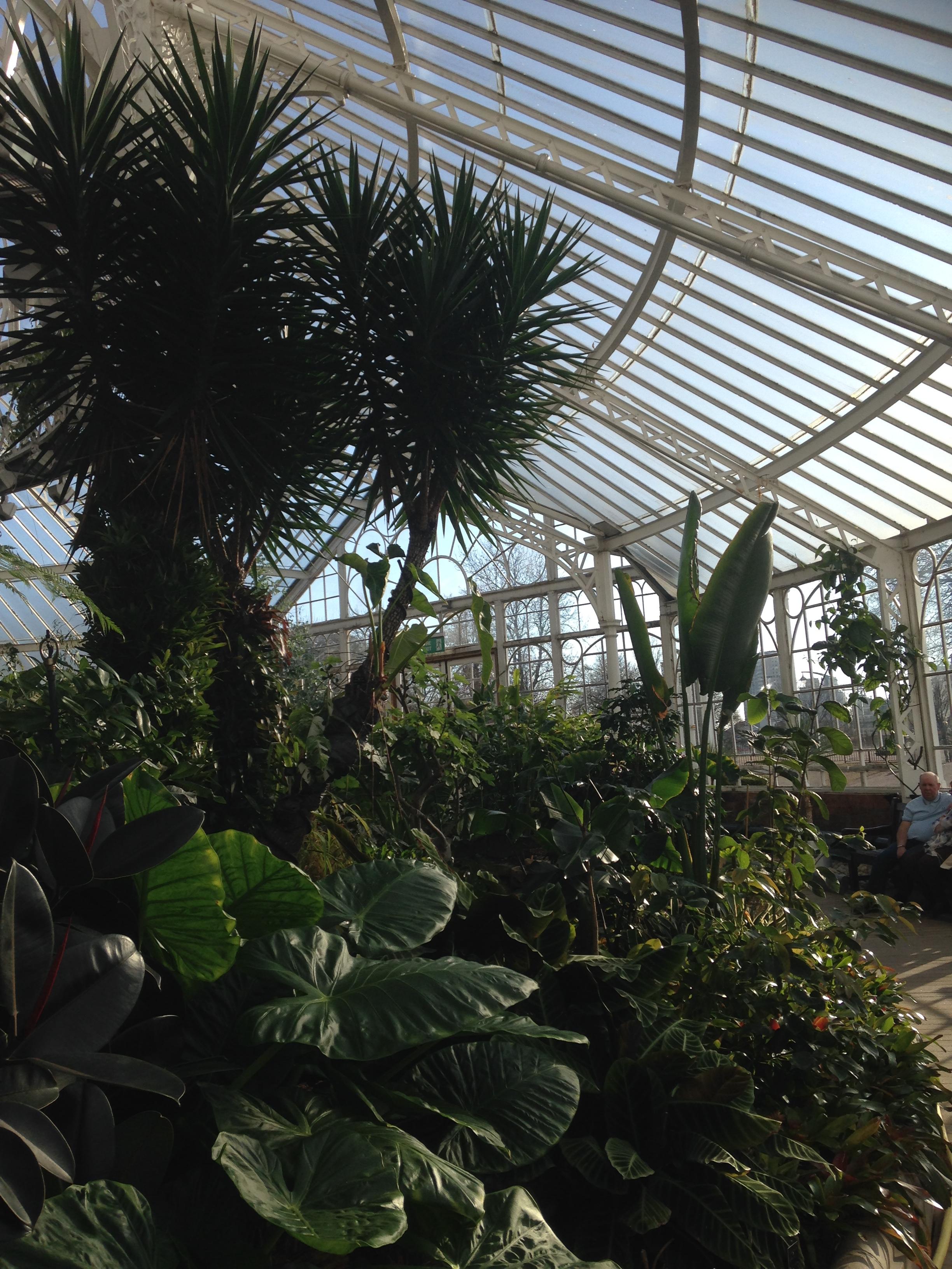 Winter Gardens Glasgow Green