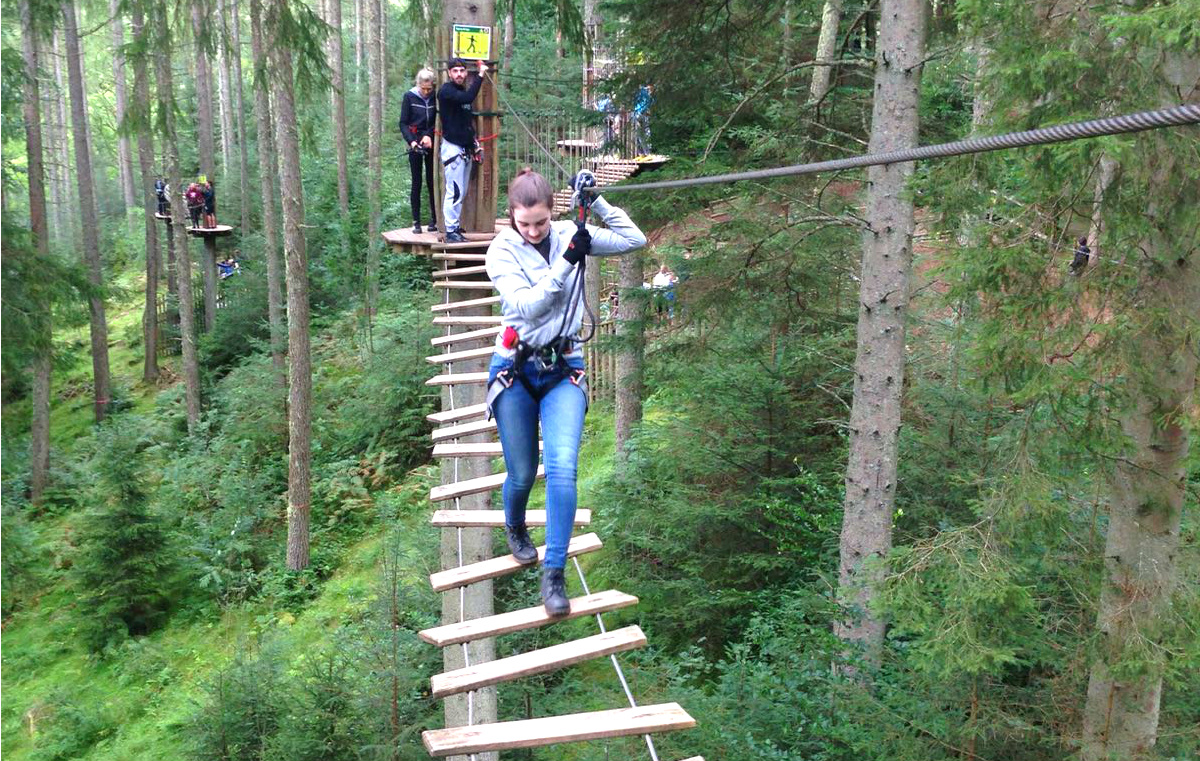 Swinging from the Trees at Go Ape!