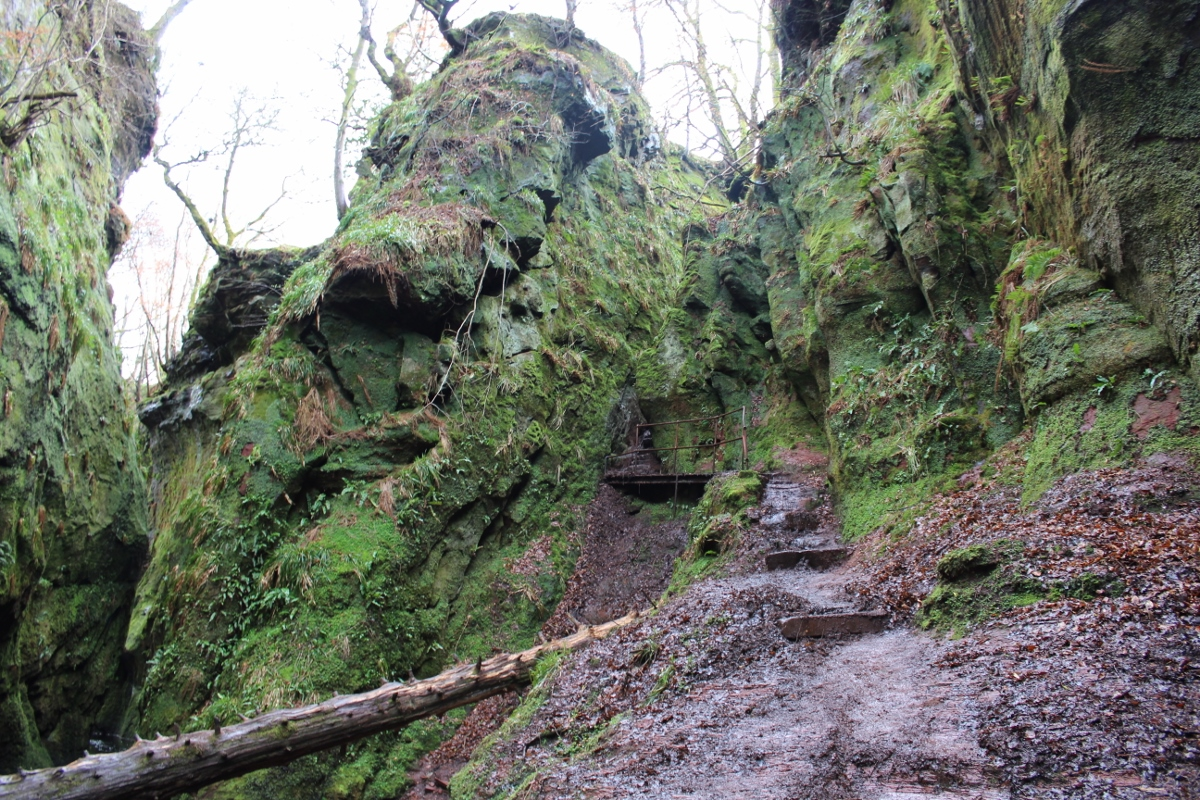 Devils Pulpit and Finnich Glen